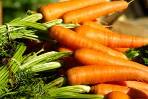 Graines de carottes Bio de l'Atelier des Bons Plants