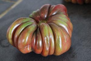 Tomate Bio Zapotec Brown