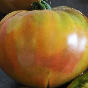 Tomate Bio Ananas Noire