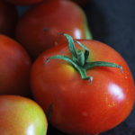 Tomate Money Maker Bio