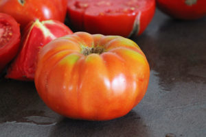 Tomate Rouge Russe Bio