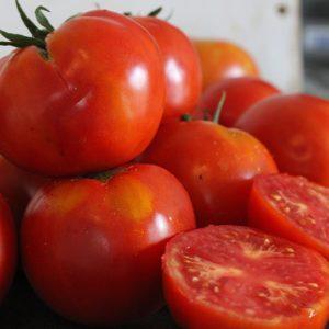 Tomate Royale des Guineaux Bio