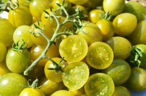 tomate-cerise-raisin-vert en grappe